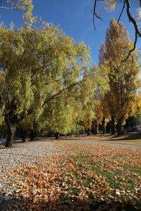 Un automne à Queenstown automne-2-200x300